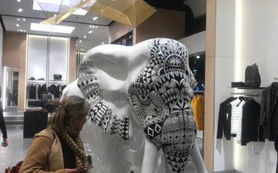 Portage et manutention oeuvre Elephant Hugo Boss